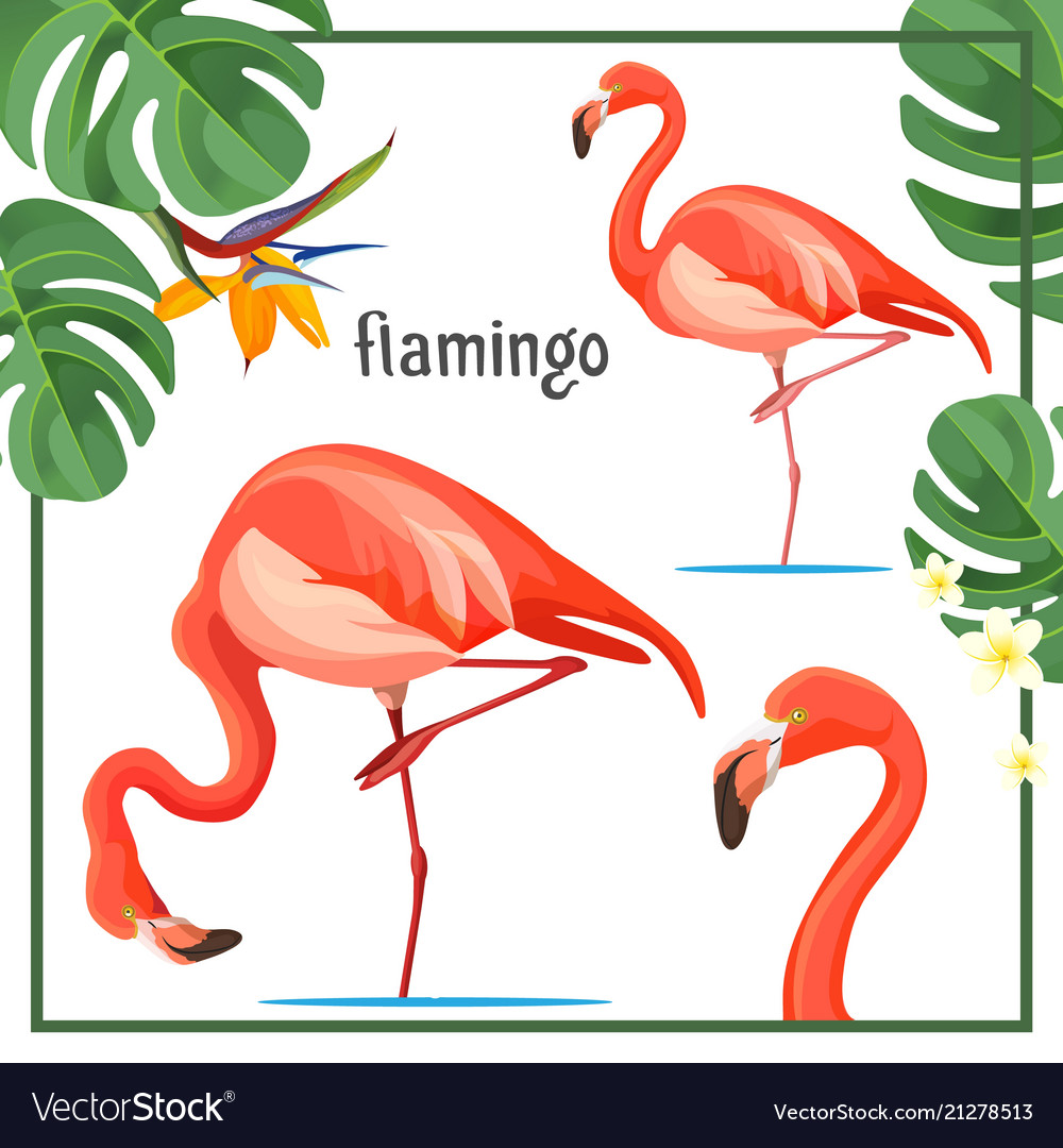 Flamingo poster with leaves and animals