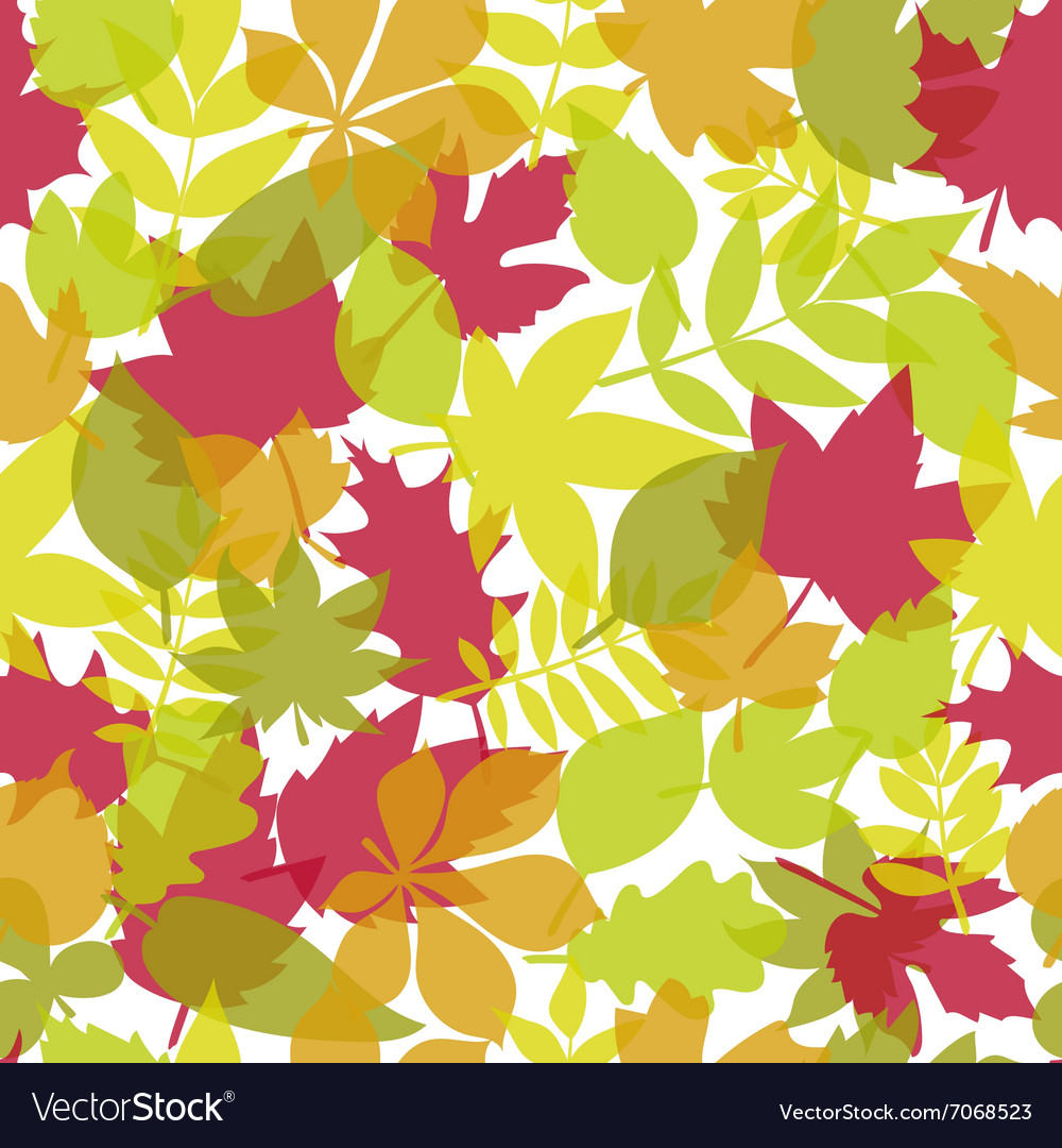 Seamless pattern with colored leaves Autumn vector image