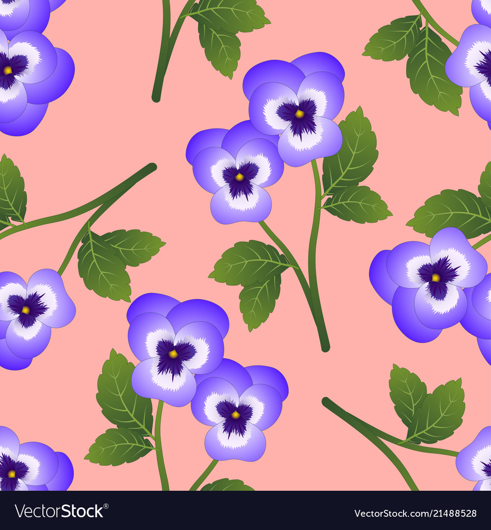 Violet pansy flower on pink background royalty free vector violet pansy flower on pink background vector image mightylinksfo