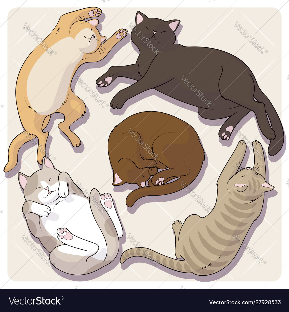 Collection cute cartoon cats in various poses