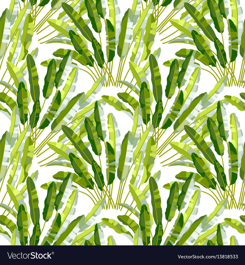 Seamless pattern with tropic plants