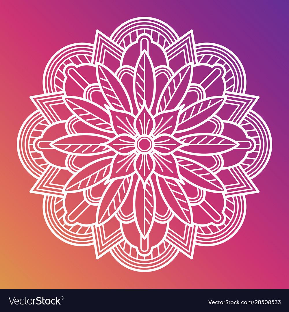 White flower mandala oriental asian arabian vector image