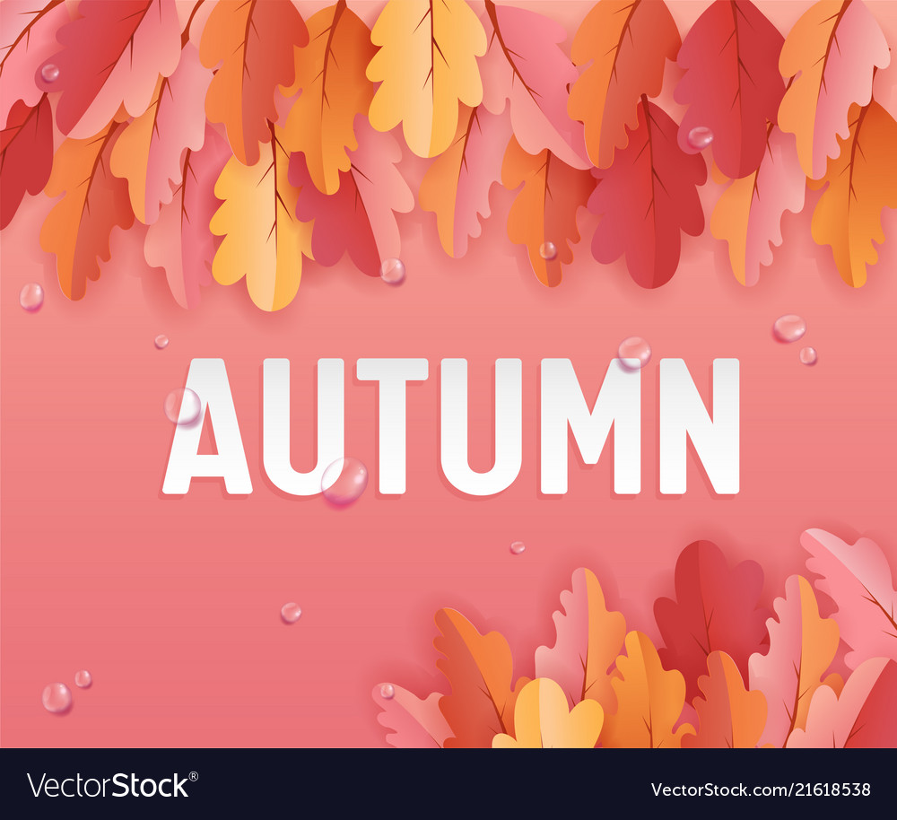 Autumn greeting card with beautiful leaves