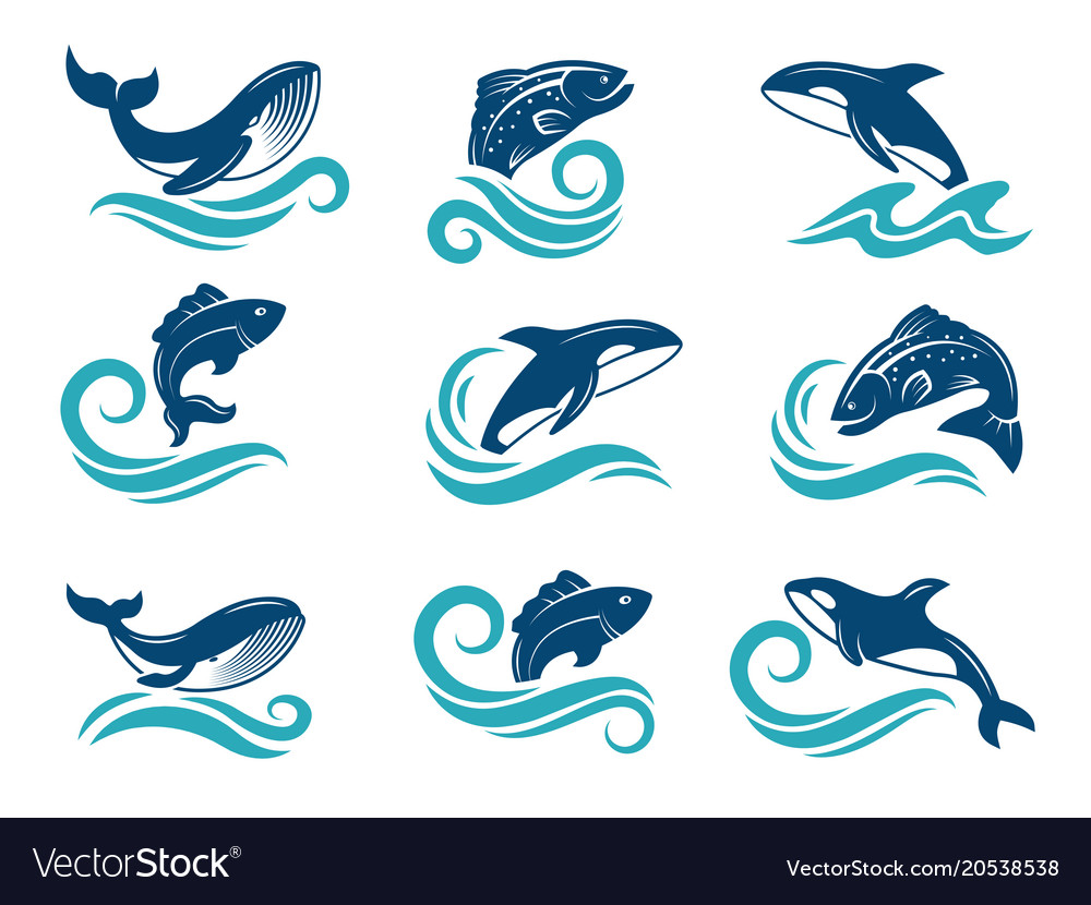 Stylized pictures of marine animals sharks