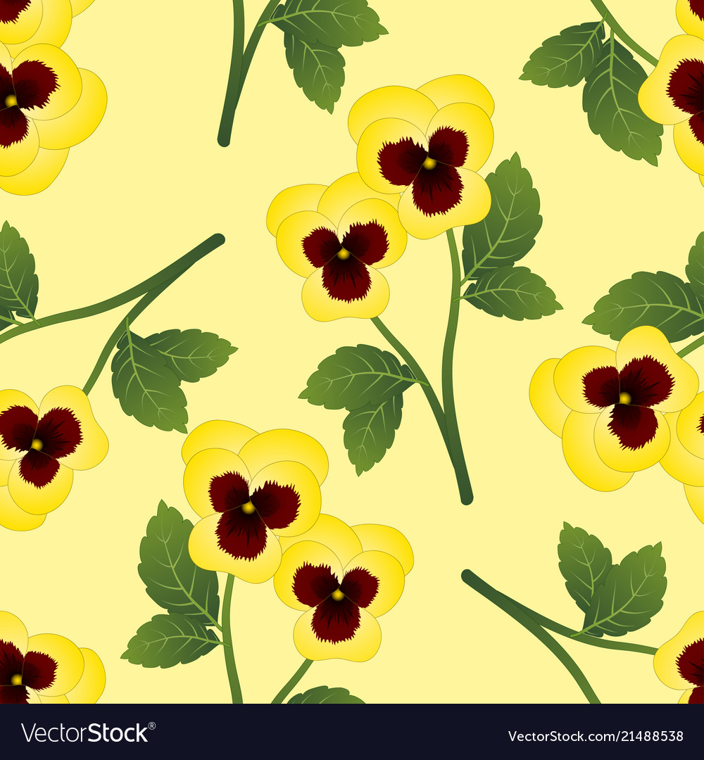 Yellow Pansy Flower On Light Yellow Background Vector Image