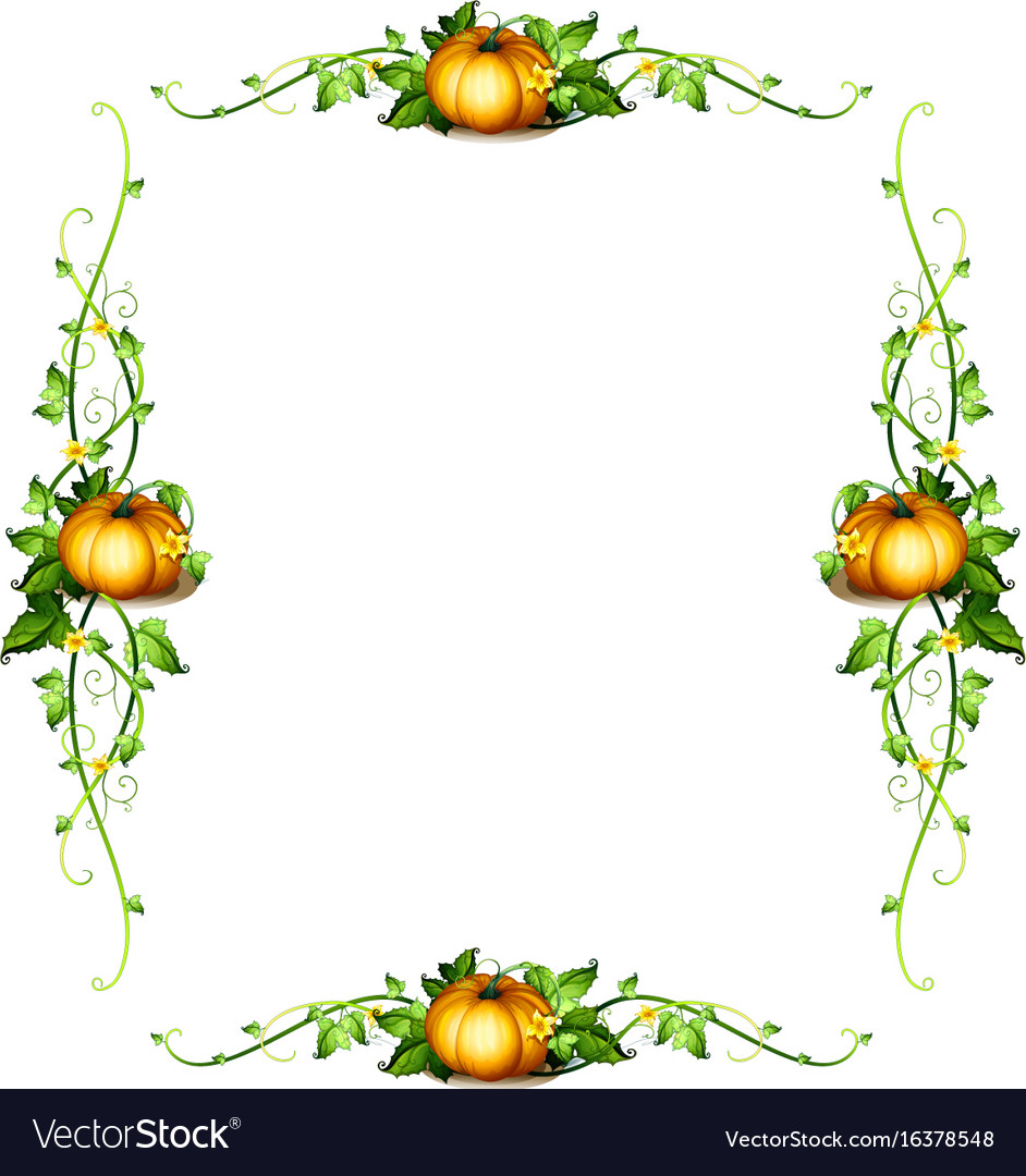 Frame template with pumpkin plants vector image on VectorStock