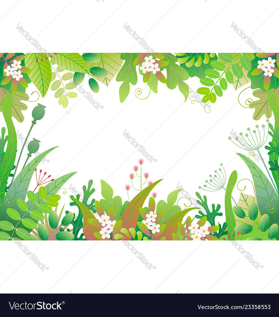 Horizontal floral frame with green plants