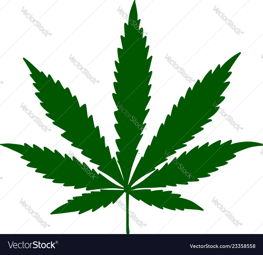 Cannabis leaf sketch for your design