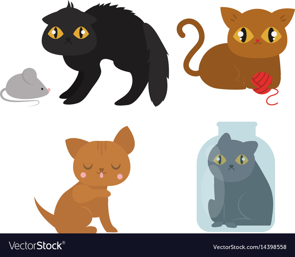 Cute cats character different pose funny animal