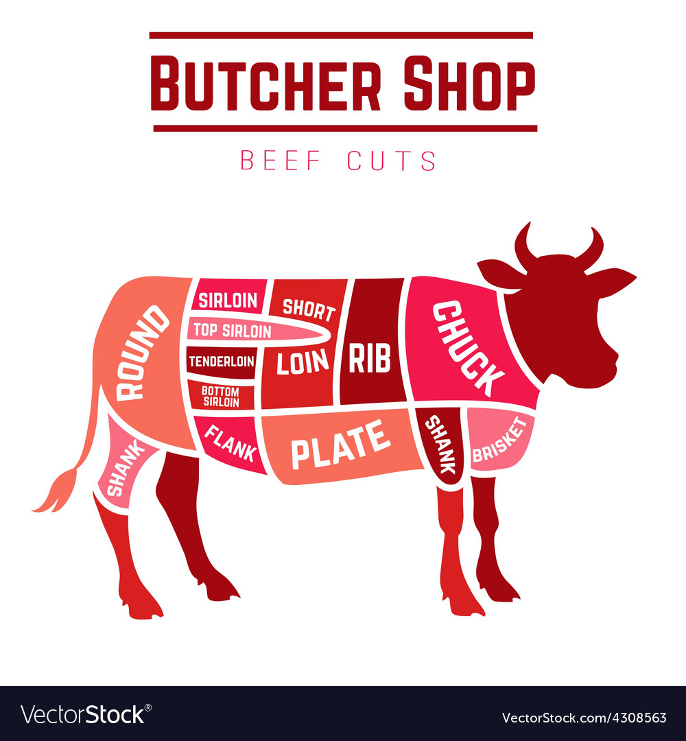 cuts of beef diagram royalty free vector image Beef Knuckle Diagram cuts of beef diagram vector image
