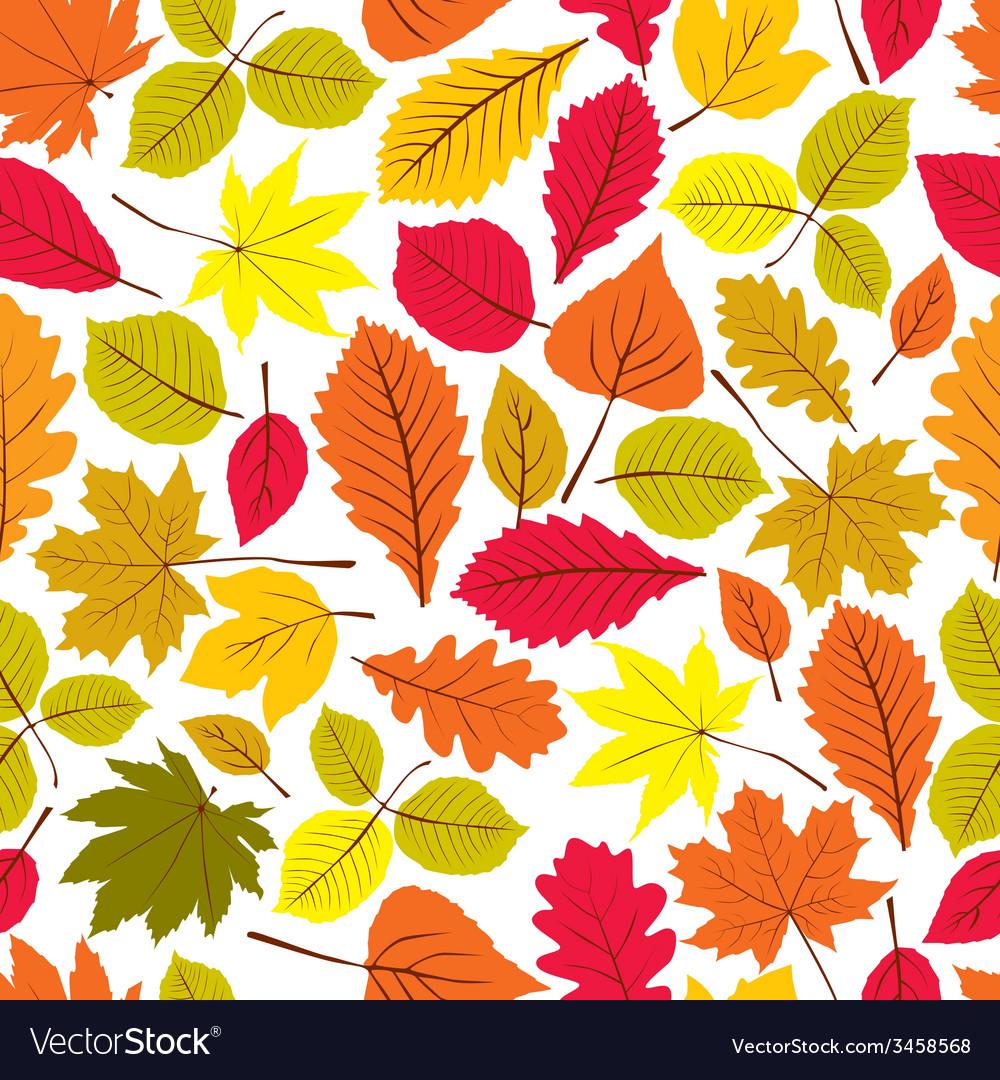 Beautiful leaves seamless pattern natural endless
