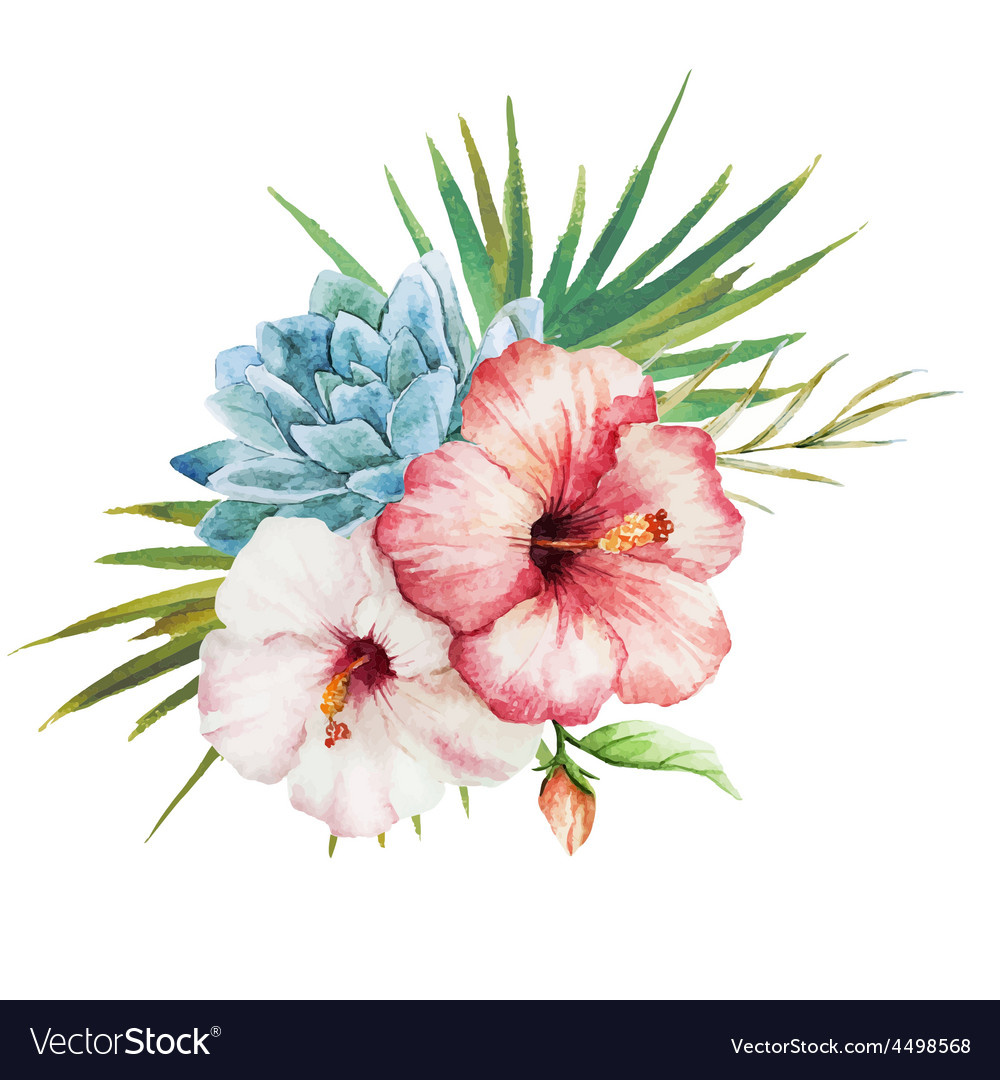 watercolor tropical flowers royalty free vector image