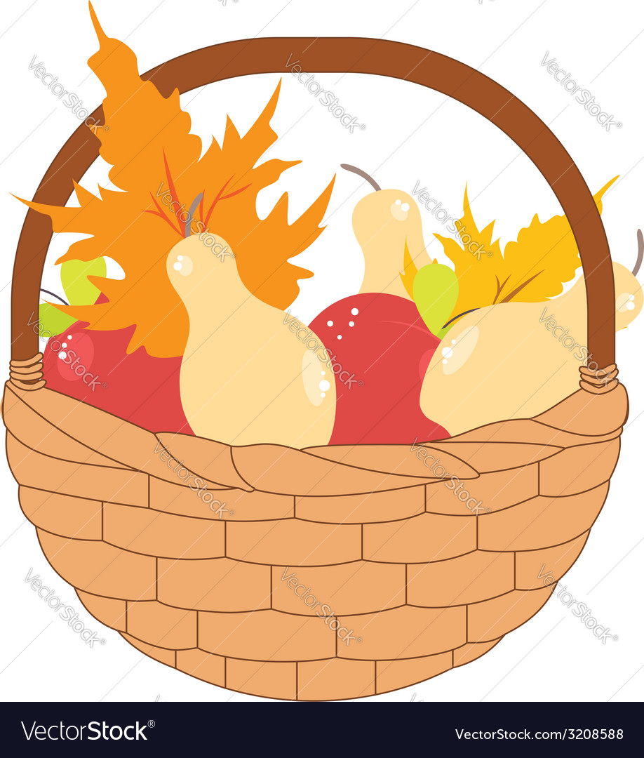 Basket of Pears and Apples vector image