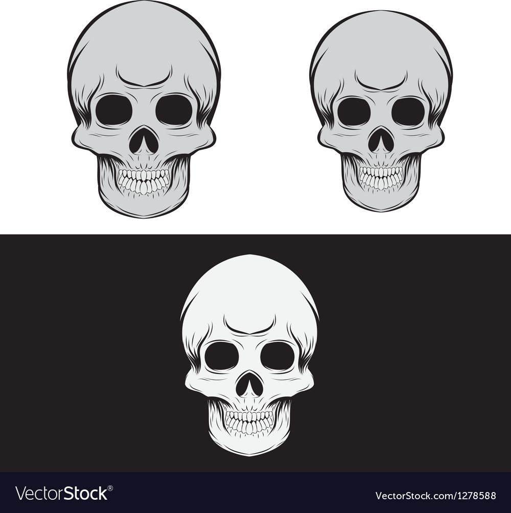 Black and Gray Skull