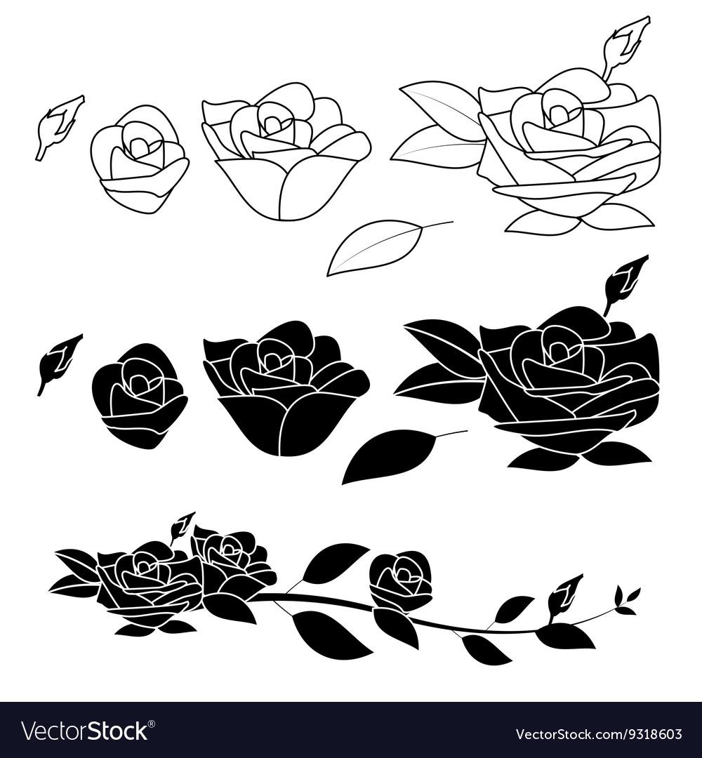 Rose flower black and white