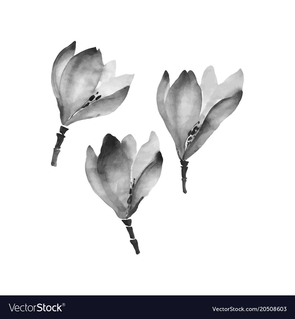 watercolor flowers hand drawing set with chinese vector image