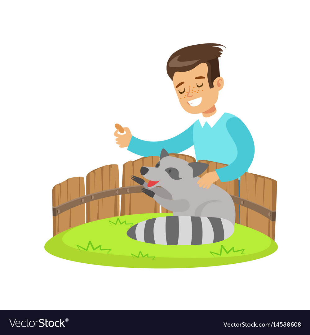 Smiling little boy petting and feeding a raccoon