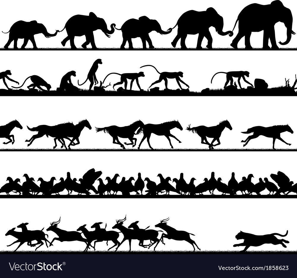 Animal foreground silhouettes vector image