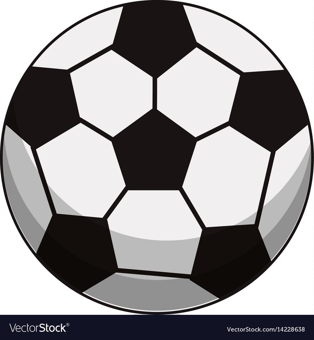 Soccer ball sport image