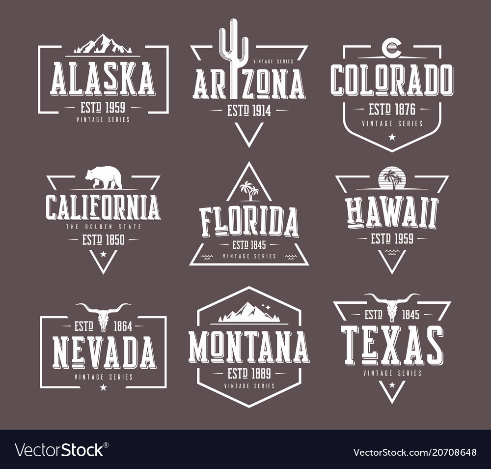 Set us states vintage t-shirt and