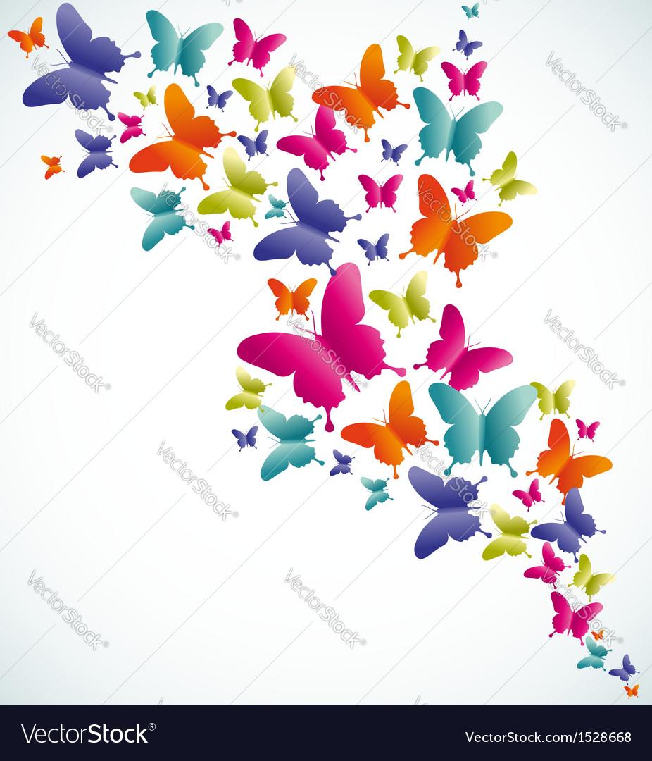 Butterfly summer splash vector image