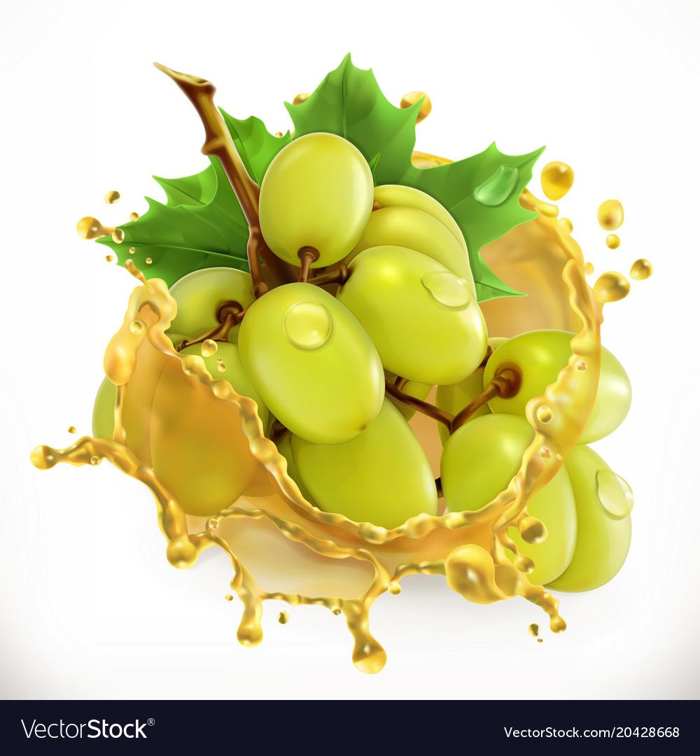 Grape juice fresh fruit 3d icon