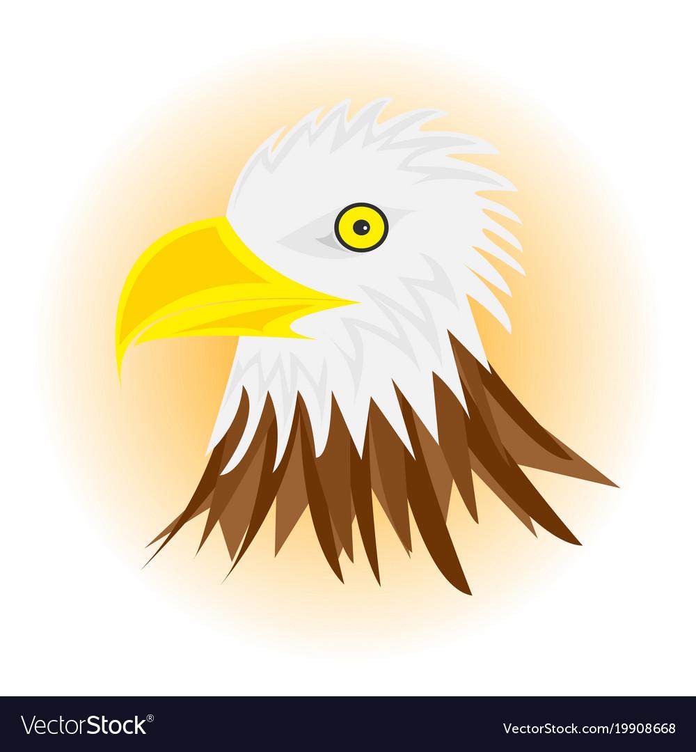 White head eagle