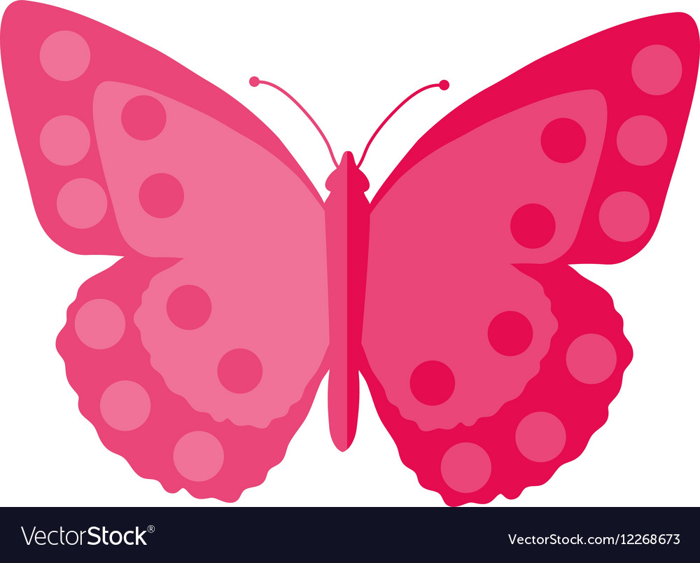 Pink Butterfly flat design Isolated on white