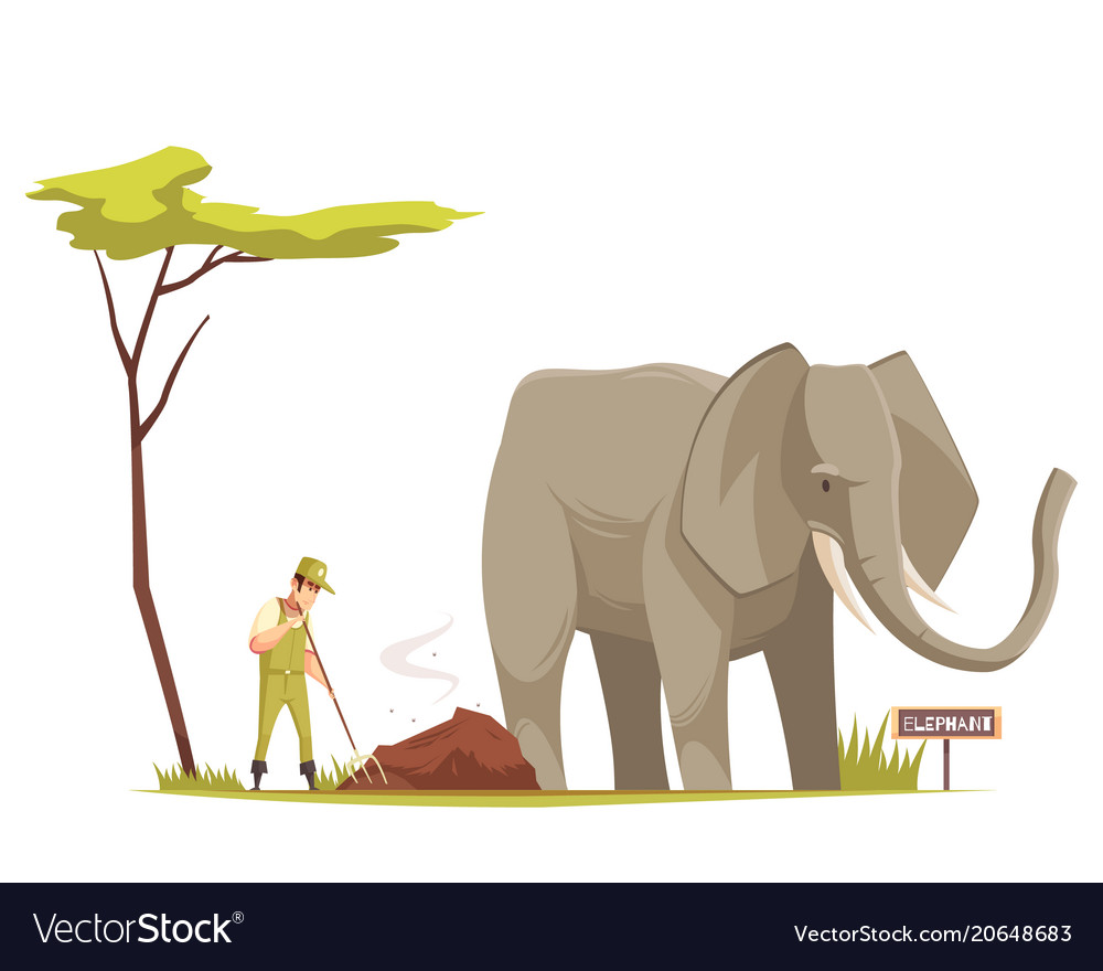 Elephant at zoo cartoon composition