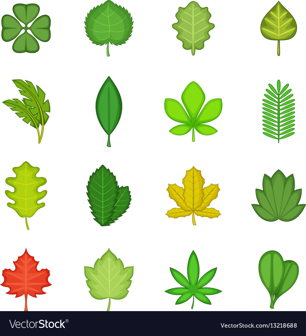 Different Leafs Icons Set Cartoon Style Royalty Free Vector
