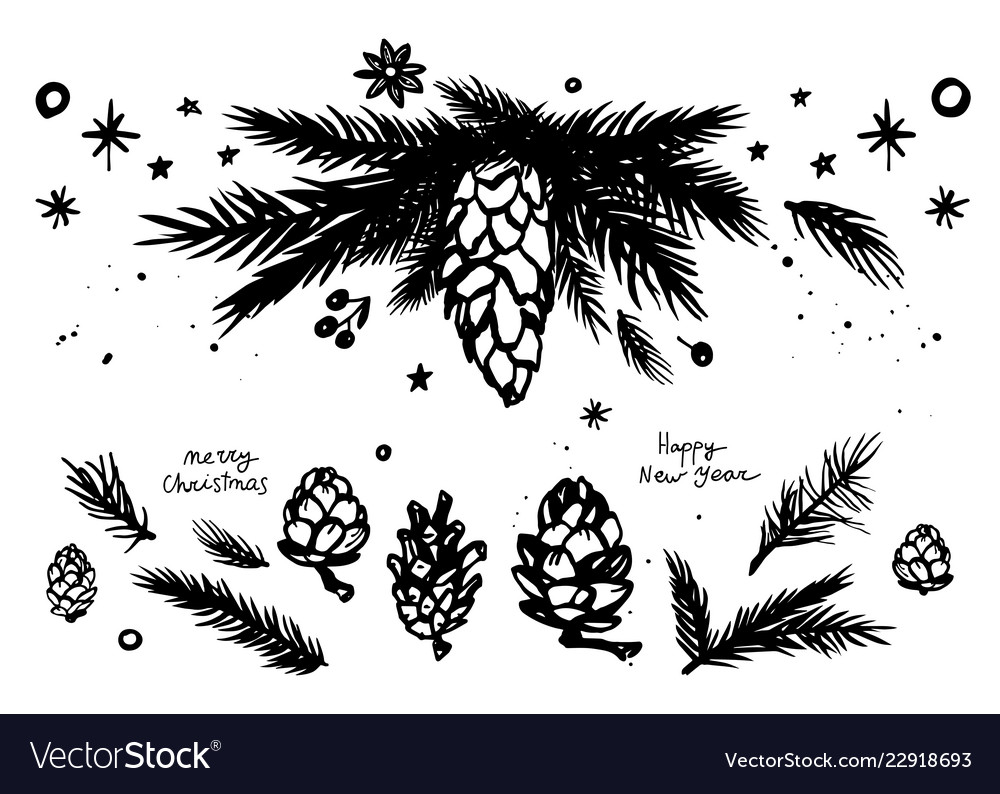 Christmas fir branches andcones set