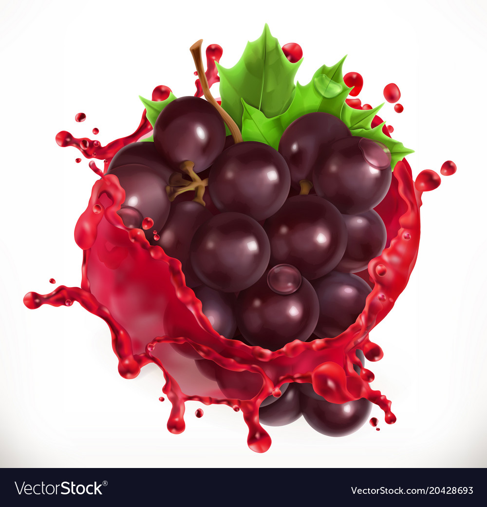 Red wine and grapes fresh fruit 3d icon vector image