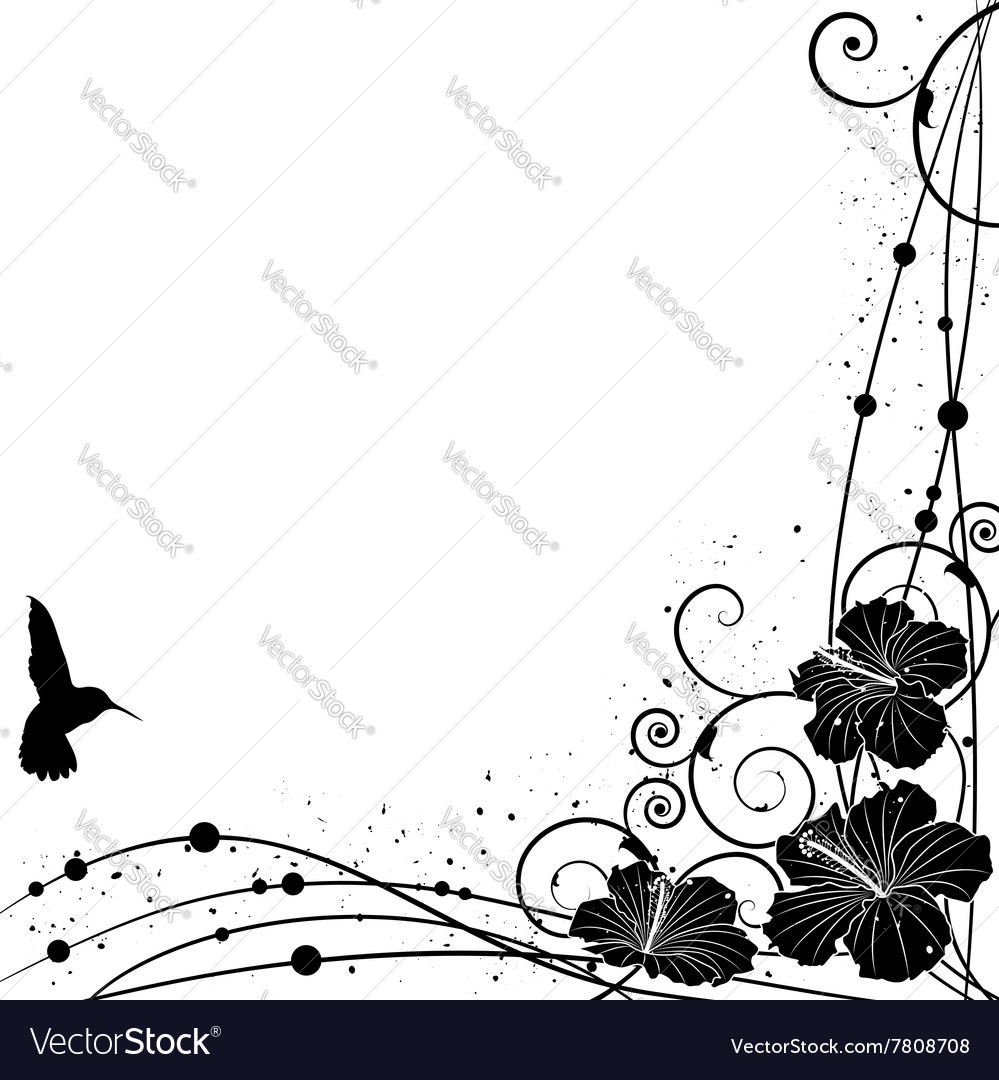 Hummingbird and Hibiscus vector image