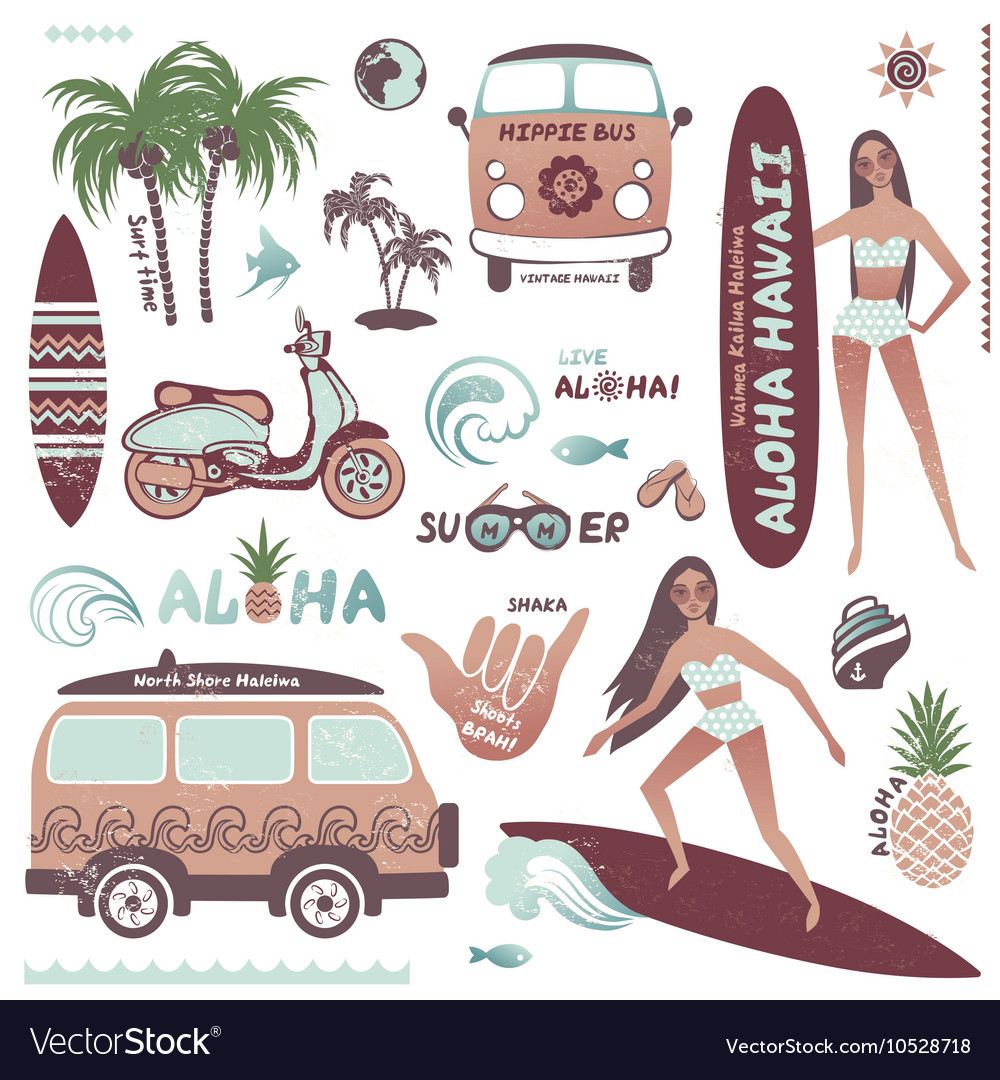 Set vintage style hawaiian summer icons surf vector