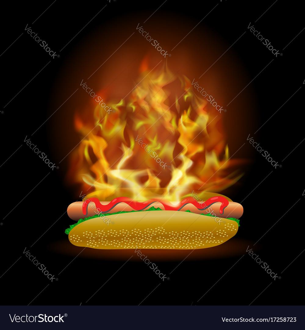 Burning fresh hot dog with ketchup