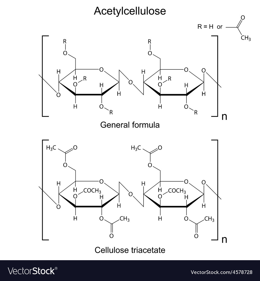 Chemical formula of acetyl cellulose polymer vector image