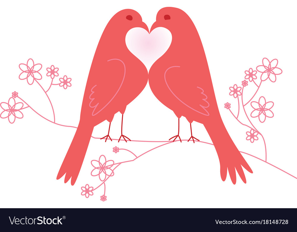 Pair of lovebirds valentines day vector image