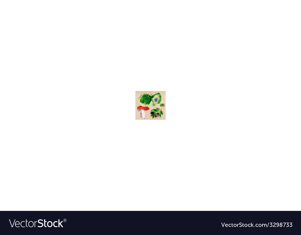 Vegetables watercolor rotkappe artichokes black