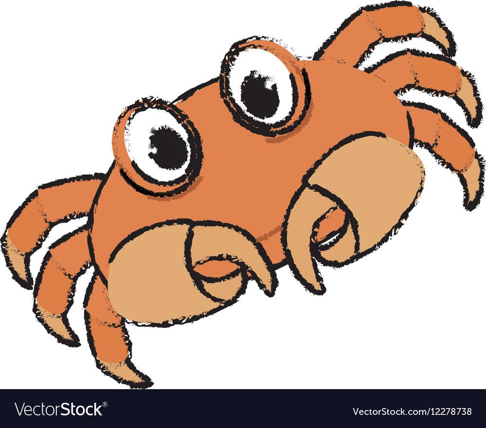 Marine crab cartoon
