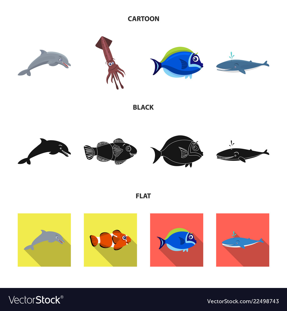 Design of sea and animal logo collection