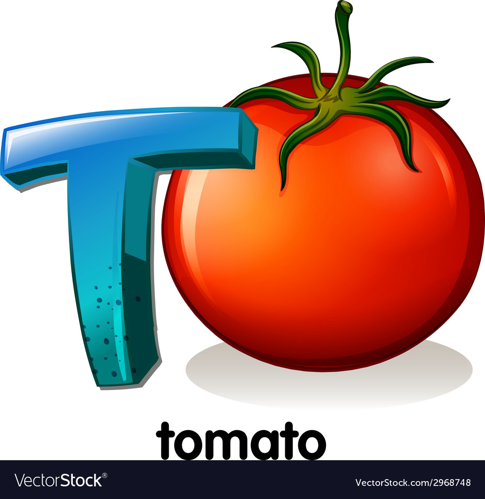 A Letter T For Tomato Vector Image
