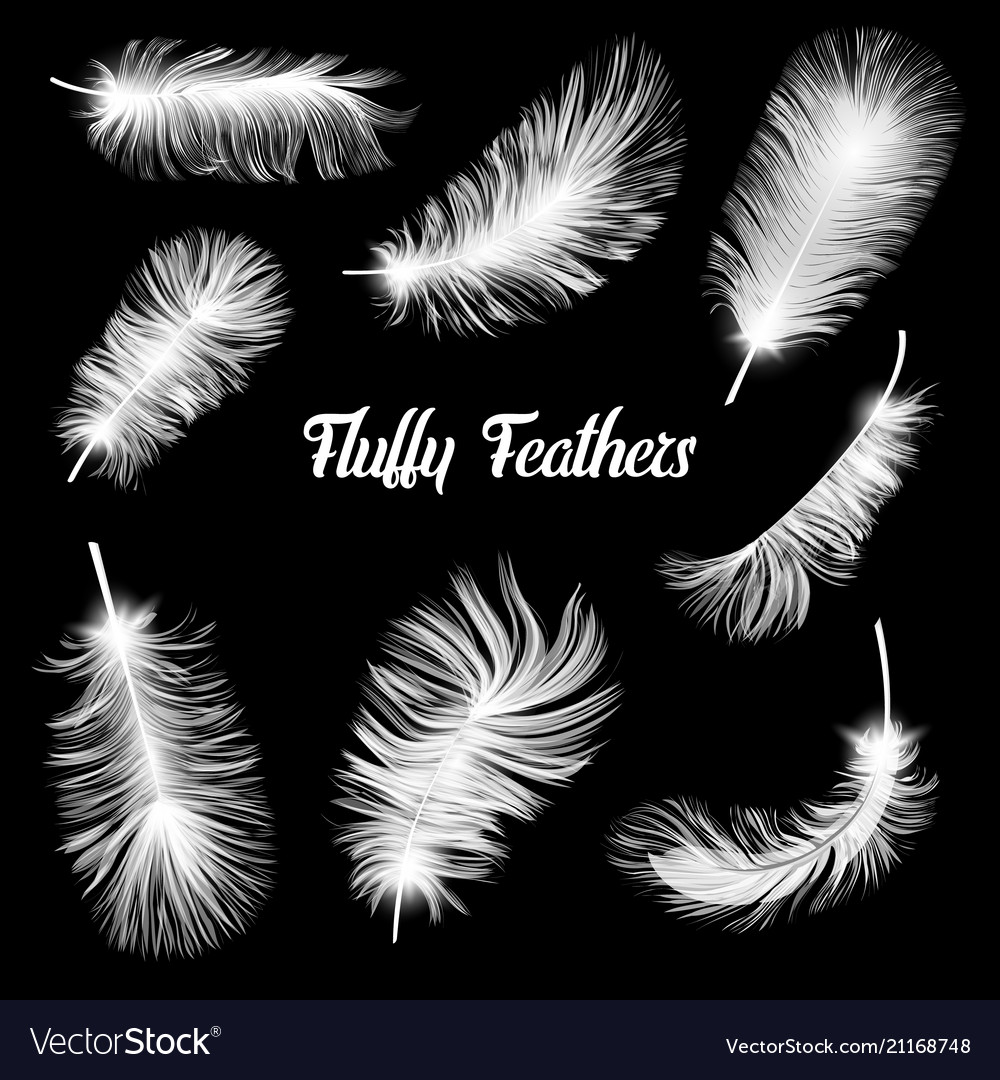 Realistic fluffy feathers falling twirled plumage