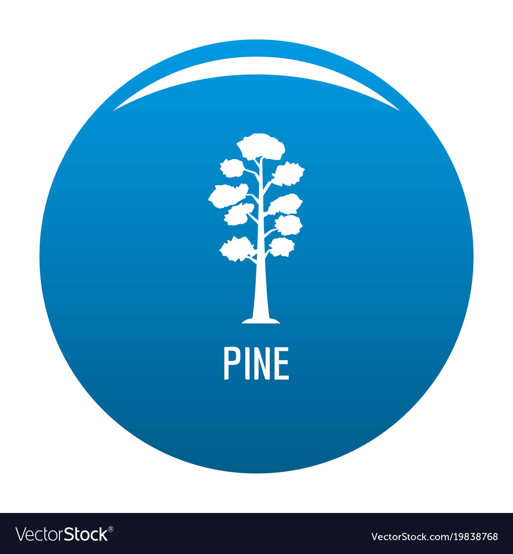 Pine tree icon blue vector image