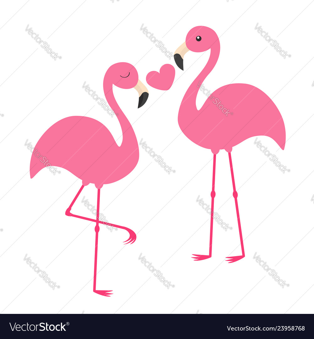 Pink flamingo couple holding heart love family