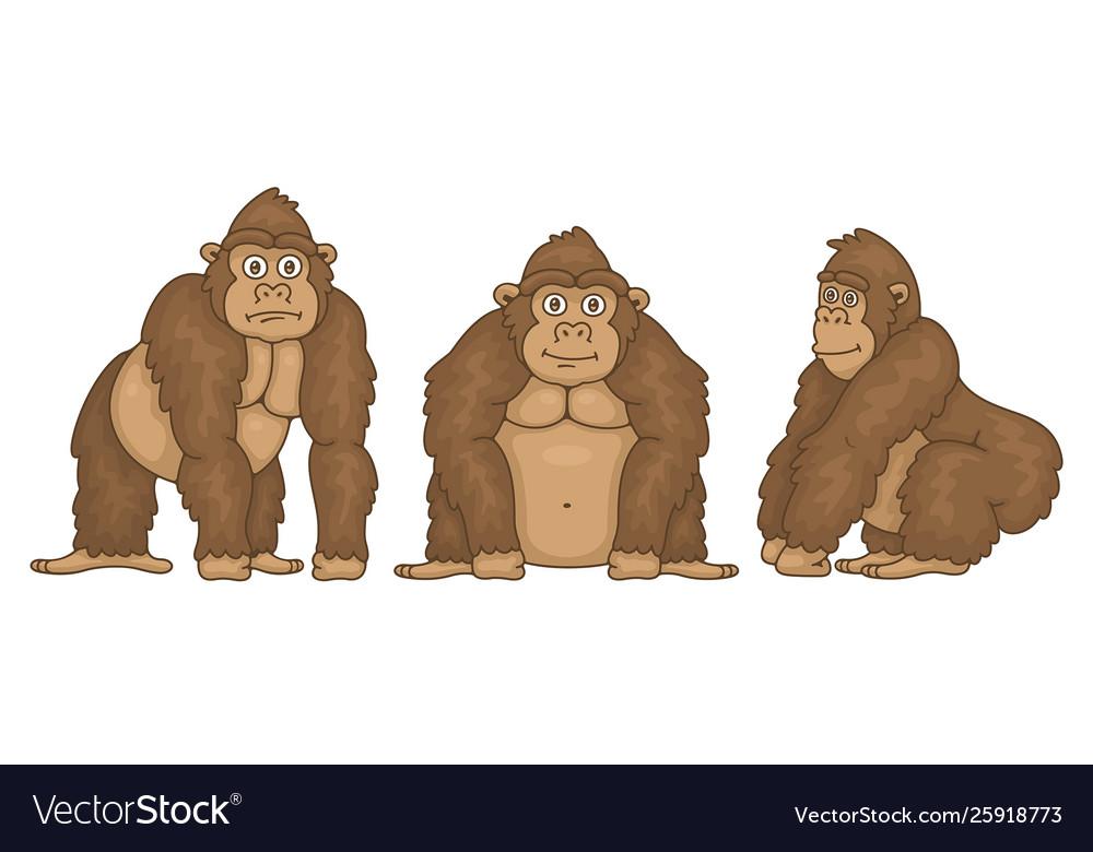 Set gorillas
