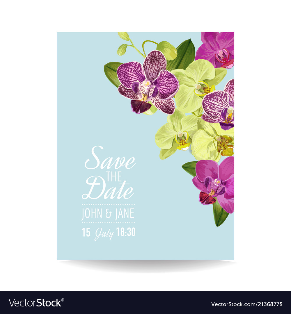 Wedding Invitation Layout Template Orchid Flowers Vector Image - Wedding invite layout templates