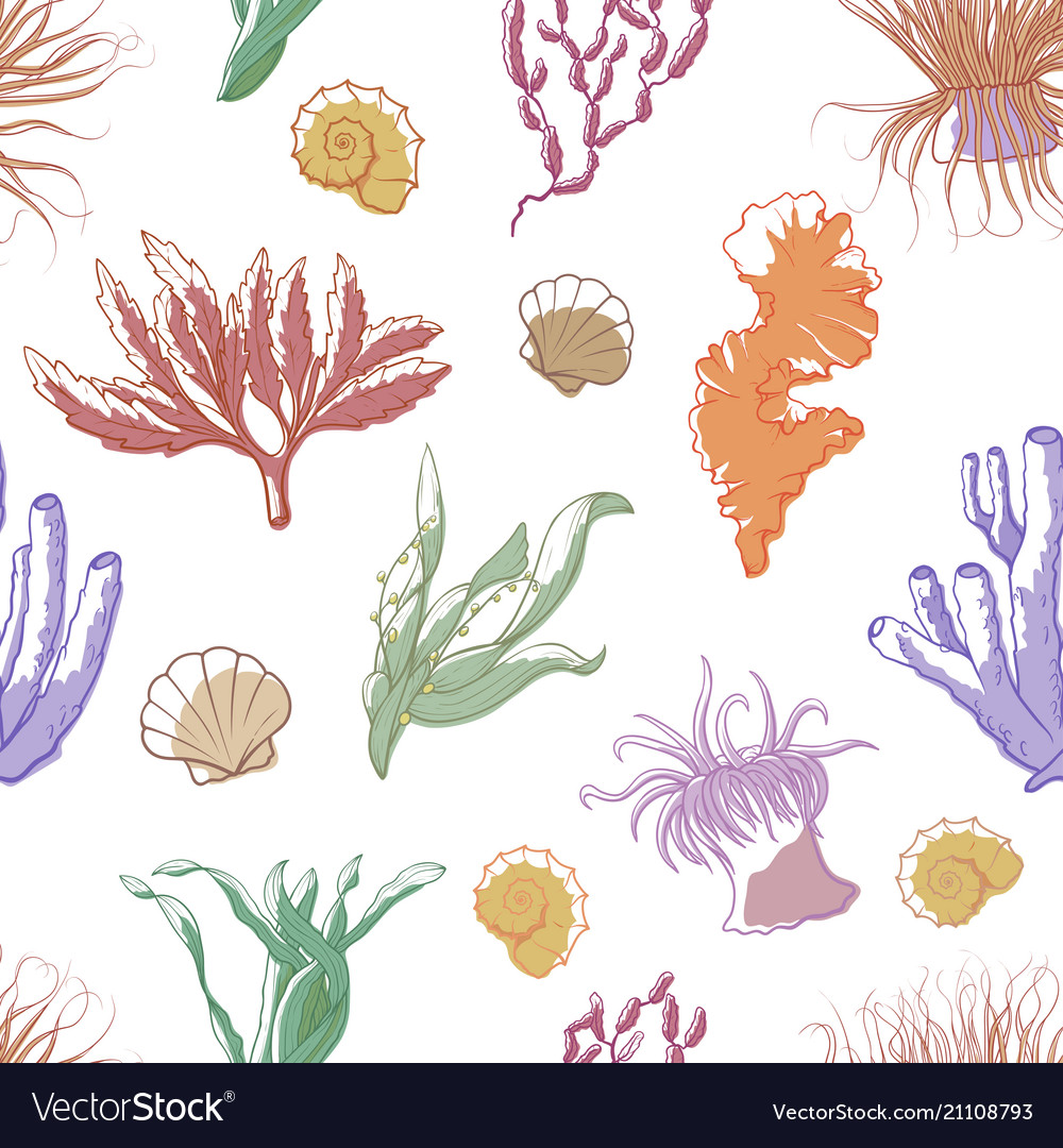 Corals and seaweed pattern
