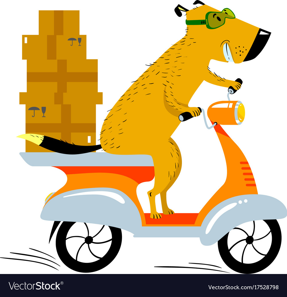 Dog working in the delivery pet character scooter