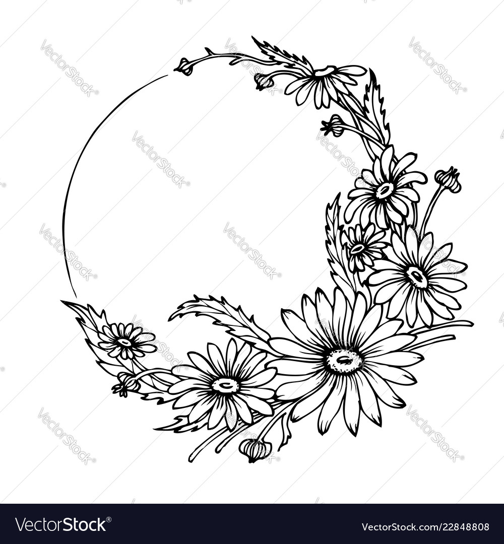 Hand drawn wreath with chamomile flowers