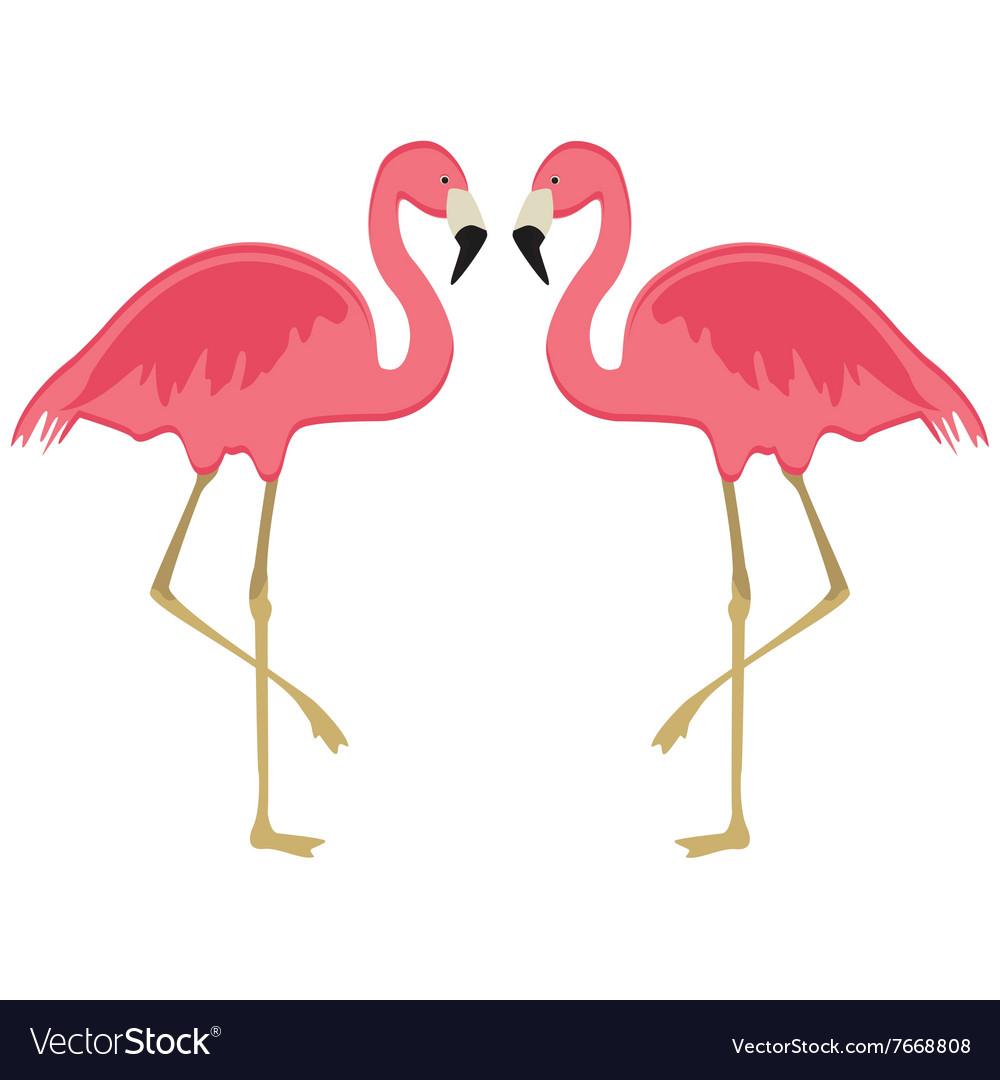 Two Pink Flamingo
